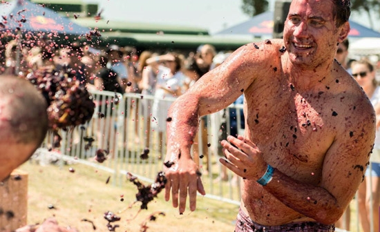 Throwing Of The Grape Festival (Australia)